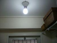 toilet light_1.jpg