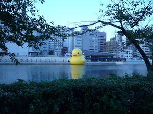 Rubber Duck_3.jpg